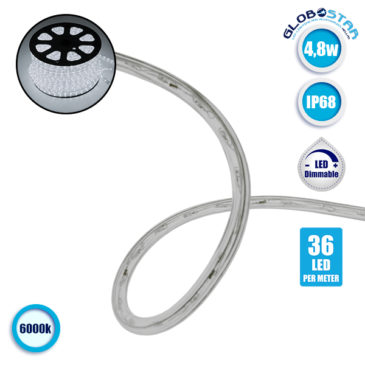 LED Φωτοσωλήνας 4.8 Watt 230 Volt 36 LED 12mm Ψυχρό Λευκό 6000k IP68 Dimmable GloboStar 22514
