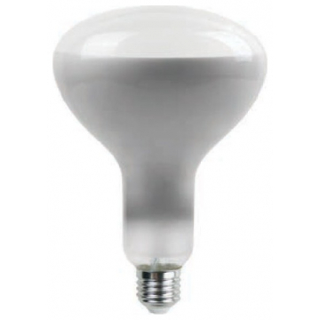 LED V-TAC Λάμπα Ε27 8W Special Straight Filament R125 Milky cover Θερμό Dimmable 7466 (7466)